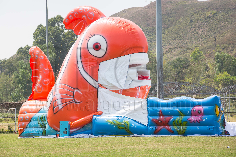 Mega Nemo